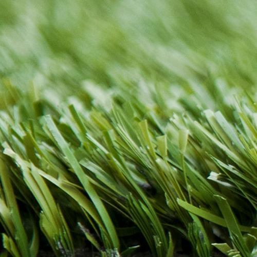 Lawn Plus: Gem